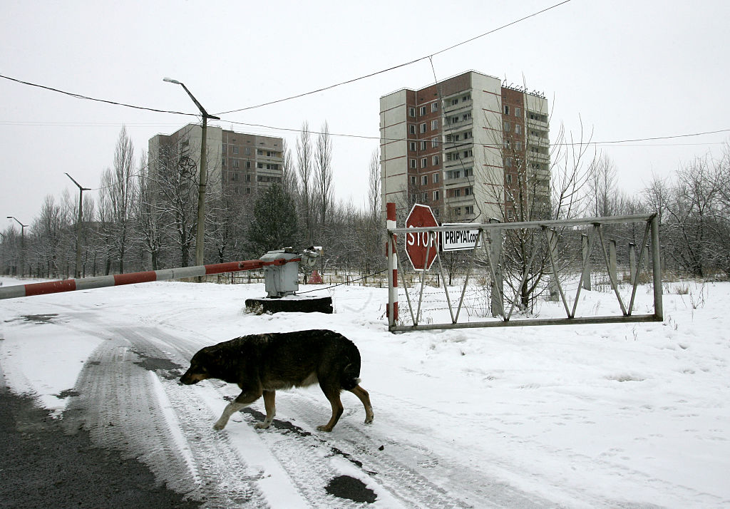 chernobyl 4