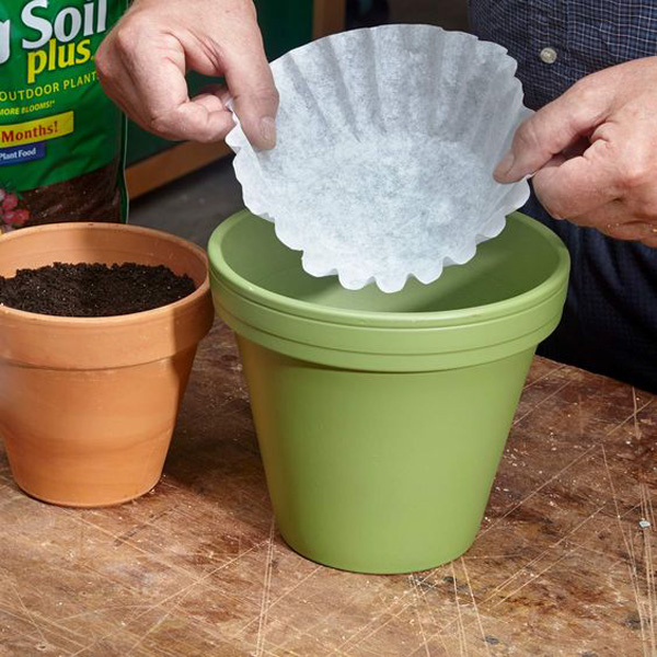 coffee-filter-plant-liner