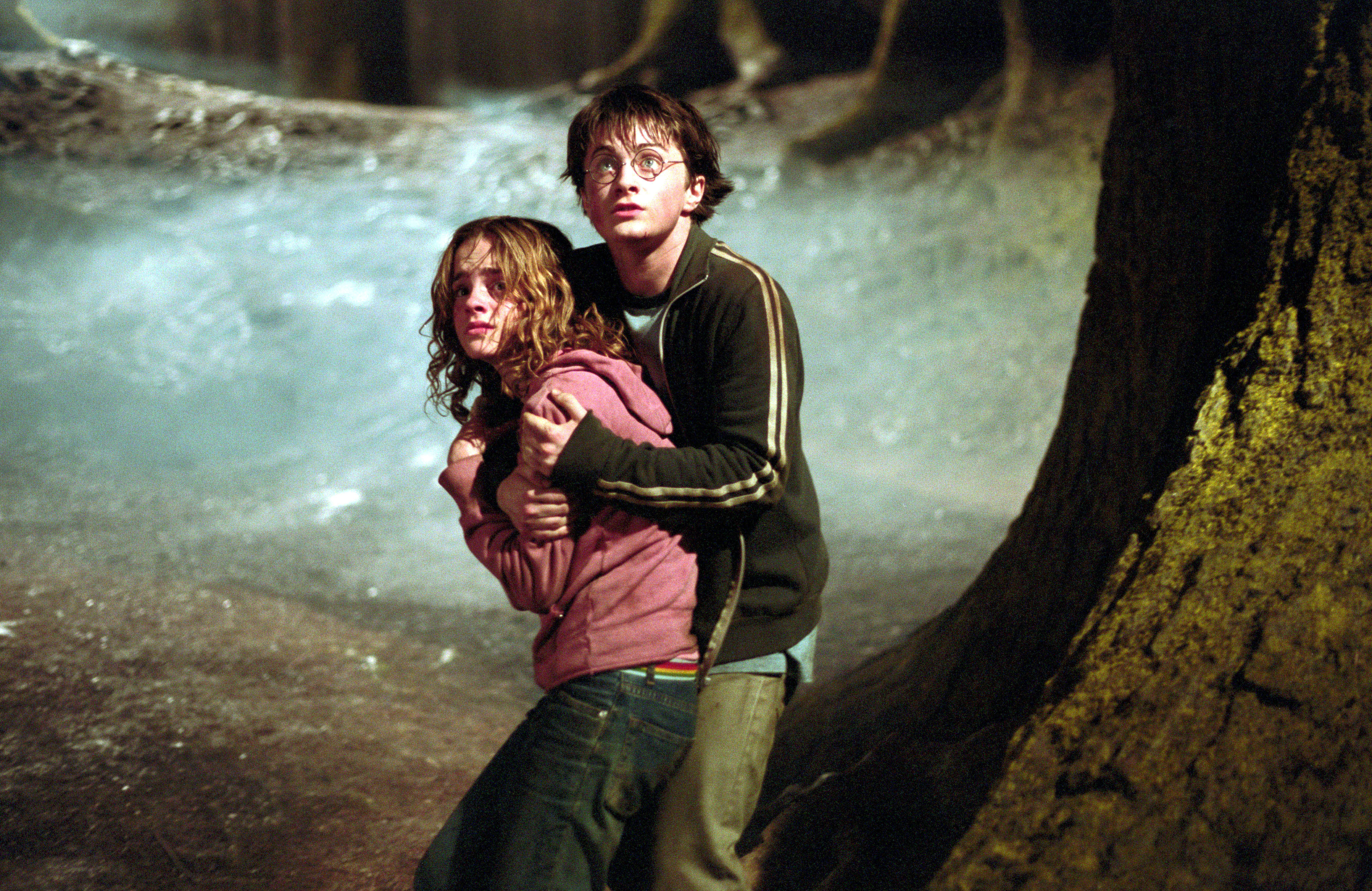 hp fan theories 35