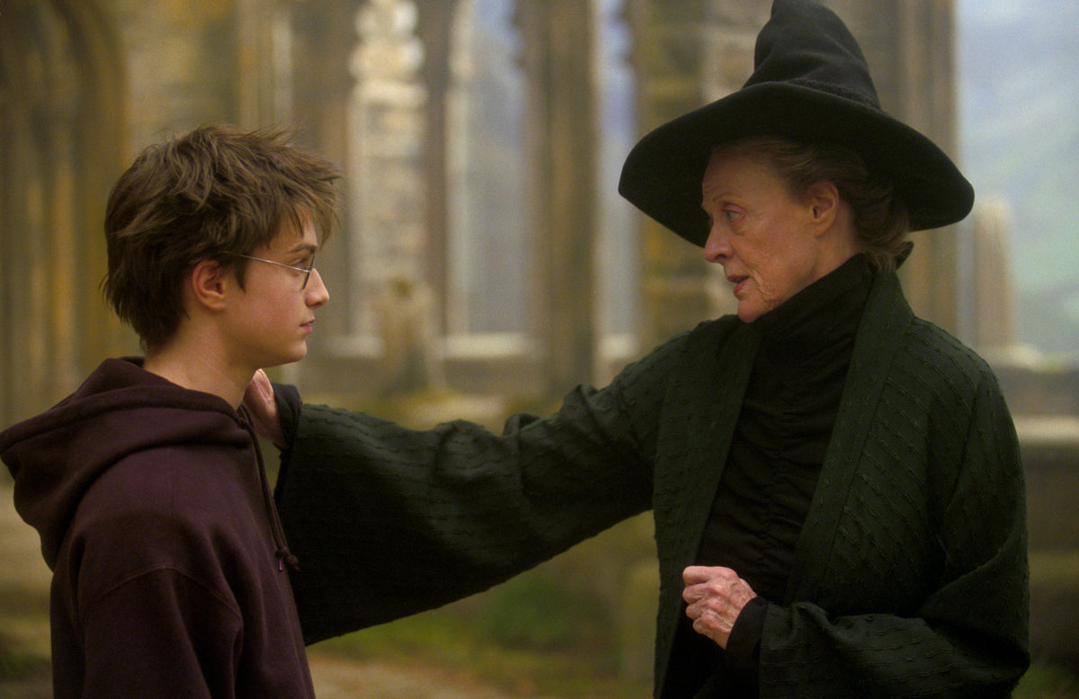 professor mcgonagall harry potter villain