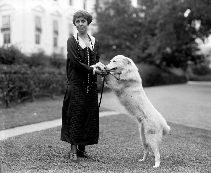 first-lady-mrs-grace-coolidge-everett.jpg